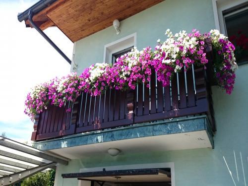 Balkonska ograja (13)