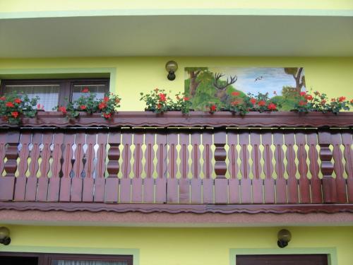 Balkonska ograja (16)