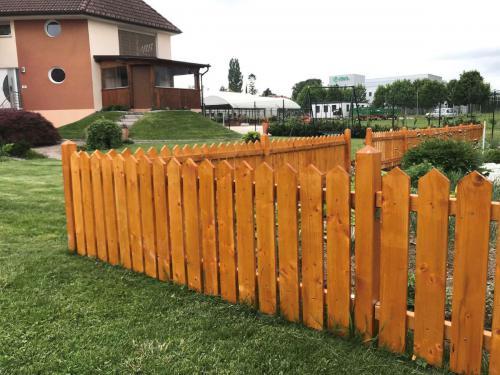 Vrtne ograje  (5) smreka ali sibirski macesen